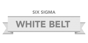 SixSigmCourse-01