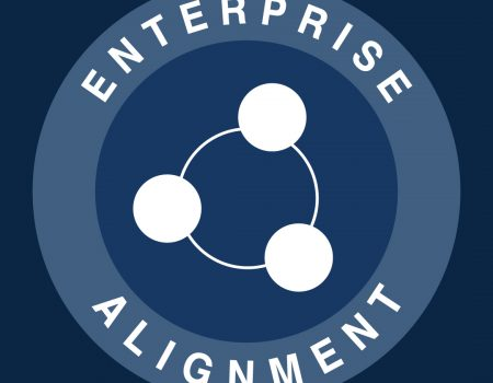 Shingo Enterprise Aligment